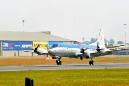 こずぃろうさんが、フェアフォード空軍基地で撮影したドイツ海軍 P-3C Orionの航空フォト(飛行機 写真・画像)
