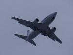 スーパードルフィンさんが、五島福江空港で撮影した全日空 737-54Kの航空フォト(写真)