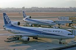 ITMで撮影された全日空 - All Nippon Airways [NH/ANA]の航空機写真