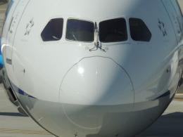JARYUさんが、ノーマン・Y・ミネタ・サンノゼ国際空港で撮影した全日空 787-8 Dreamlinerの航空フォト(飛行機 写真・画像)