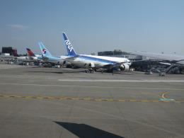 ヤマダ電機さんが、シアトル タコマ国際空港で撮影した全日空 777-381/ERの航空フォト(飛行機 写真・画像)