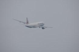 Tomochanさんが、函館空港で撮影した日本航空 777-246の航空フォト(飛行機 写真・画像)