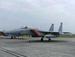 rjnsphotoclub-No.07さんが、横田基地で撮影した米空軍嘉手納基地所属 F-15 Eagleの航空フォト(写真)