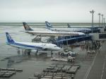 日向雪兎さんが、中部国際空港で撮影した全日空 A320-214の航空フォト(写真)