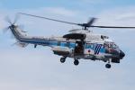 へりさんが、横浜赤レンガ倉庫で撮影した海上保安庁 AS332L1 Super Pumaの航空フォト(写真)
