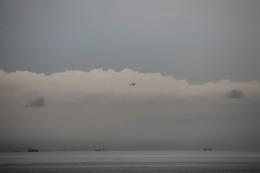 日向雪兎さんが、北九州空港で撮影した全日空 787-8 Dreamlinerの航空フォト(飛行機 写真・画像)