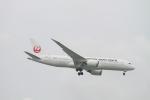 matsuさんが、シンガポール・チャンギ国際空港で撮影した日本航空 787-8 Dreamlinerの航空フォト(写真)
