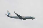 matsuさんが、シンガポール・チャンギ国際空港で撮影した厦門航空 737-85Cの航空フォト(写真)