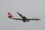 matsuさんが、シンガポール・チャンギ国際空港で撮影したターキッシュ・エアラインズ A340-313Xの航空フォト(写真)