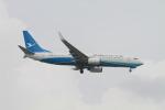matsuさんが、シンガポール・チャンギ国際空港で撮影した厦門航空 737-85Cの航空フォト(飛行機 写真・画像)