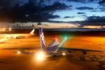 tm1211さんが、那覇空港で撮影した全日空 747-481(D)の航空フォト(写真)