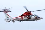 へりさんが、横浜赤レンガ倉庫で撮影した横浜市消防航空隊 AS365N2 Dauphin 2の航空フォト(写真)
