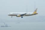 しんさんが、香港国際空港で撮影したロイヤルブルネイ航空 A320-232の航空フォト(写真)