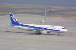meijeanさんが、中部国際空港で撮影した全日空 A320-211の航空フォト(飛行機 写真・画像)