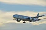 パンダさんが、成田国際空港で撮影したエミレーツ航空 777-31H/ERの航空フォト(写真)