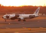 ふじいあきらさんが、成田国際空港で撮影した全日空 767-381/ERの航空フォト(飛行機 写真・画像)