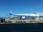 GE90777-300ERさんが、那覇空港で撮影した全日空 A320-211の航空フォト(写真)