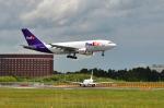 パンダさんが、成田国際空港で撮影したフェデックス・エクスプレス A310-324(F)の航空フォト(写真)