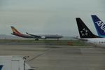 ふじいあきらさんが、羽田空港で撮影したアシアナ航空 A330-323Xの航空フォト(写真)
