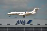 パンダさんが、成田国際空港で撮影したVERIZON CORPORATE SERVICES GROUP INC G-IV-X Gulfstream G450の航空フォト(写真)