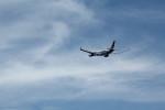 アイスコーヒーさんが、関西国際空港で撮影したトランスアジア航空 A330-343Xの航空フォト(飛行機 写真・画像)