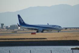 ヒラカメさんが、岩国空港で撮影した全日空 737-881の航空フォト(飛行機 写真・画像)