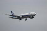 たにへいさんが、中部国際空港で撮影した全日空 777-281の航空フォト(写真)