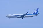 TOY2011さんが、富山空港で撮影した全日空 737-881の航空フォト(写真)