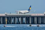 パンダさんが、羽田空港で撮影したスカイマーク 737-8HXの航空フォト(写真)