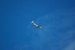 rjnsphotoclub-No.07さんが、静岡空港で撮影した海上自衛隊の航空フォト(飛行機 写真・画像)