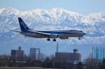 はいぱーのりちゃんさんが、富山空港で撮影した全日空 737-881の航空フォト(写真)