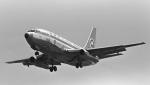 チャーリーマイクさんが、名古屋飛行場で撮影した全日空 737-281の航空フォト(写真)