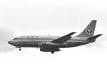 チャーリーマイクさんが、伊丹空港で撮影した全日空 737-281の航空フォト(写真)