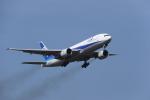 kage30さんが、岡山空港で撮影したANA & JPエクスプレスの航空フォト(飛行機 写真・画像)