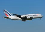 goldengoldsさんが、成田国際空港で撮影したエールフランス航空 A380-861の航空フォト(写真)