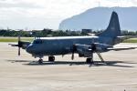 Dojalanaさんが、函館空港で撮影したカナダ軍 P-3 Orionの航空フォト(飛行機 写真・画像)