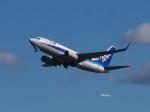 レッドベアーさんが、新千歳空港で撮影した全日空 737-781の航空フォト(写真)