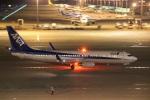 たにへいさんが、中部国際空港で撮影した全日空 737-881の航空フォト(写真)