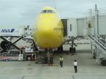 ハイローオジサンさんが、羽田空港で撮影した全日空 747-481(D)の航空フォト(飛行機 写真・画像)
