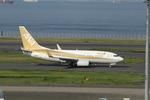 chalk2さんが、羽田空港で撮影した全日空 737-781の航空フォト(写真)