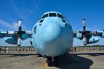 パンダさんが、下総航空基地で撮影した航空自衛隊 C-130H Herculesの航空フォト(飛行機 写真・画像)