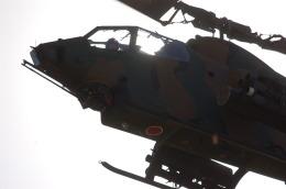 ygfdcxzさんが、国分駐屯地で撮影した陸上自衛隊 AH-1Sの航空フォト(飛行機 写真・画像)