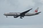 アイスコーヒーさんが、羽田空港で撮影した日本航空 777-246/ERの航空フォト(写真)