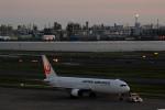 アイスコーヒーさんが、羽田空港で撮影した日本航空 767-346の航空フォト(写真)