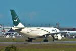 パンダさんが、成田国際空港で撮影したパキスタン国際航空 A310-324/ETの航空フォト(写真)
