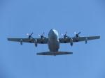 まぁぼーさんが、守山駐屯地で撮影した航空自衛隊 C-130H Herculesの航空フォト(写真)