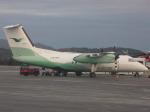 NIKEさんが、ベルゲン空港で撮影したヴィデロー航空 DHC-8-102A Dash 8の航空フォト(写真)