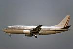 Gambardierさんが、伊丹空港で撮影したメキシコ空軍 737-33Aの航空フォト(写真)