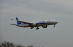 MizukinPaPaさんが、成田国際空港で撮影した全日空 777-381/ERの航空フォト(写真)