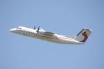 WING_ACEさんが、ケアンズ空港で撮影したニューギニア航空 DHC-8-315 Dash 8の航空フォト(飛行機 写真・画像)
